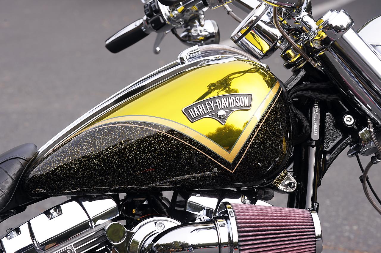 Harley Breakout
